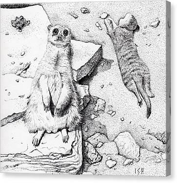 Meerkats Canvas Print by Inger Hutton