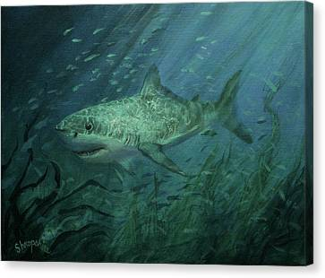 Megadolon Shark Canvas Print by Tom Shropshire