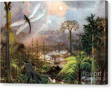 Meganeura In Upper Carboniferous Canvas Print by Science Source