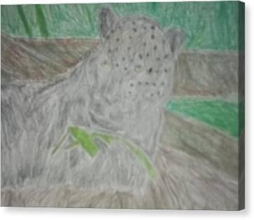 Melanistic Jaguar Drawing On Paper Canvas Print by William Sahir House