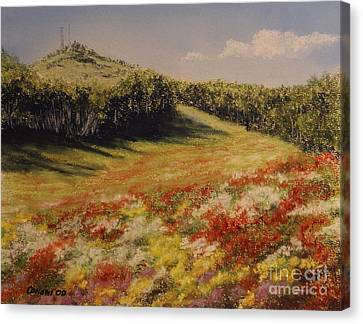 Canvas Print featuring the painting Melkow Trail  by Stanza Widen