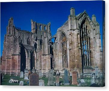Melrose Abbey  Scotland Canvas Print by Tim Townsend