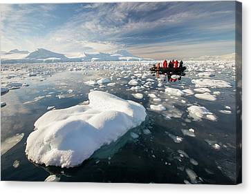 Inflatable Canvas Print - Members Of An Expedition Cruise by Ashley Cooper