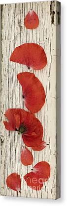 Peeling Canvas Print - Memories Of A Summer Vertical by Priska Wettstein