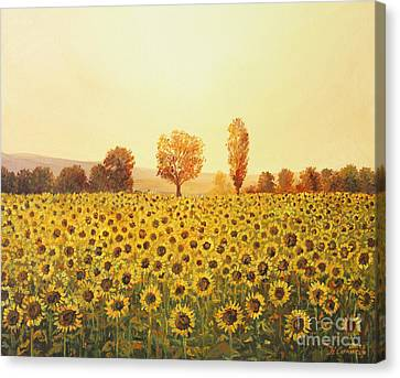 Memories Of The Summer Canvas Print by Kiril Stanchev