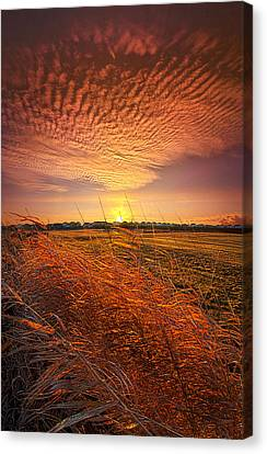 Memories Of Whispered Thoughts Canvas Print by Phil Koch