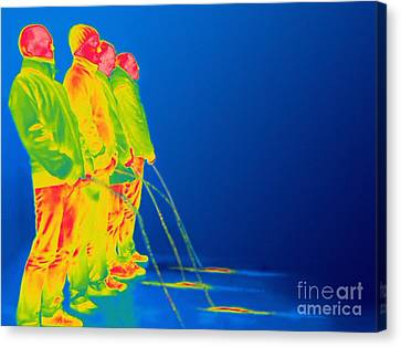 Men Urinating, Thermogram Canvas Print by Thierry Berrod, Mona Lisa Production/ Science Photo Library