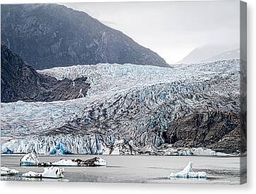 Mendenhall Glacier 1 Canvas Print by Wayne Meyer