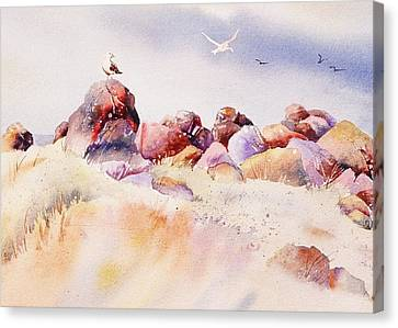 Mendocino Birds Canvas Print by John  Svenson