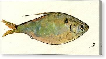 Menhaden Fish Canvas Print