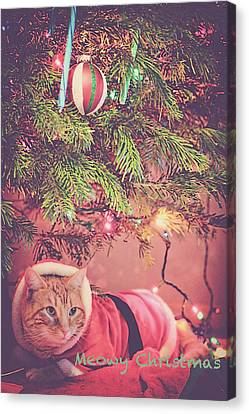 Meowy Christmas Canvas Print by Melanie Lankford Photography
