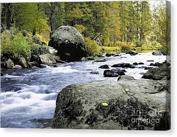 Merced River In Yosemite Canvas Print