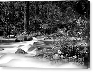 Merced River Canvas Print by Jason Abando