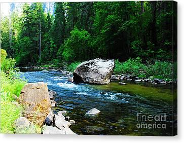 Yosemite National Park Canvas Print - Merced River - Yosemite National Park by Laraine C Photography