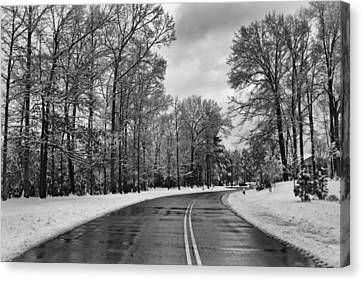 Meridian Parkway Canvas Print by Ben Shields