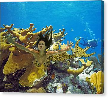 Canvas Print featuring the photograph Mermaid Camoflauge by Paula Porterfield-Izzo