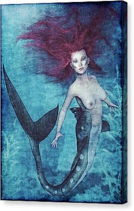 Mermaid Dreams Canvas Print by Maynard Ellis