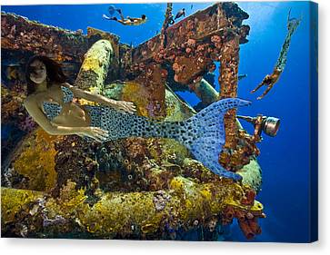 Canvas Print featuring the photograph Mermaid Oblivion by Paula Porterfield-Izzo