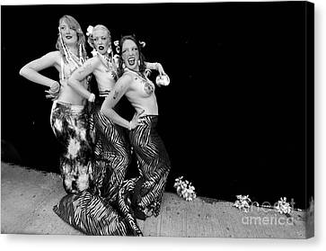 Mermaids 2011 Canvas Print by Mark Gilman