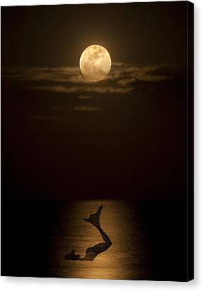 Canvas Print featuring the photograph Mermaid's Moonsong by Paula Porterfield-Izzo