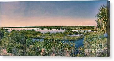 Merritt Island National Wildlife Refuge Panorama Canvas Print by Anne Rodkin