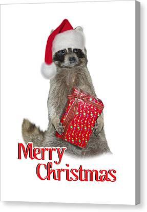 Merry Christmas -  Raccoon Canvas Print by Gravityx9 Designs