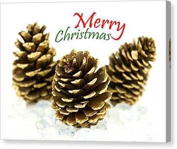Merry Christmas Canvas Print by Blink Images