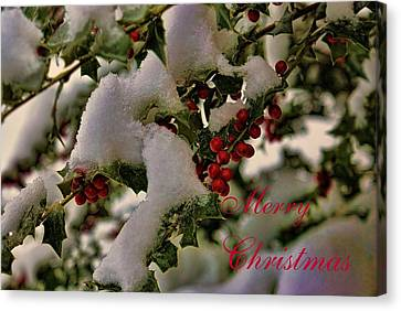 Merry Christmas Card Holly Canvas Print by Rick Friedle