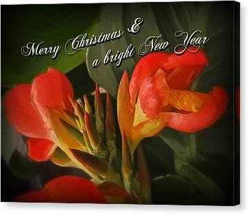 Merry Christmas Happy New Year Card - Red Canna Lily Canvas Print by Mother Nature