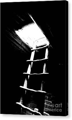 Mesa Verde National Park Kiva Ladder Conte Crayon Black And White Canvas Print by Shawn O'Brien