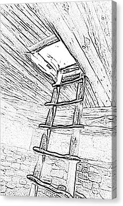 Mesa Verde National Park Spruce Tree House Kiva Ladder Black And White Line Art Canvas Print by Shawn O'Brien
