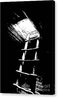 Mesa Verde National Park Spruce Tree House Kiva Ladder Black And White Stamp Canvas Print by Shawn O'Brien