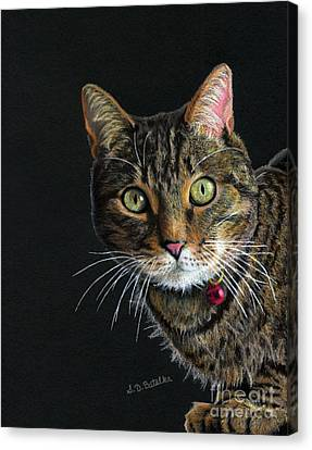 Mesmer Eyes Canvas Print