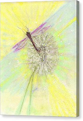 Mesmerism Canvas Print