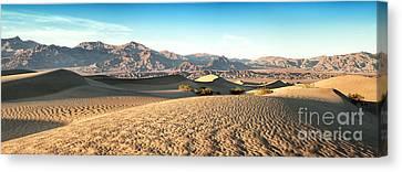 Mesquite Dunes Pano Canvas Print by Jane Rix
