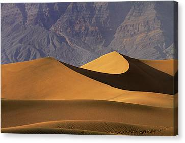 Mesquite Flat Sand Dunes And Grapevine Canvas Print