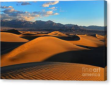 Mesquite Sand Dunes Death Valley Canvas Print by Peter Dang