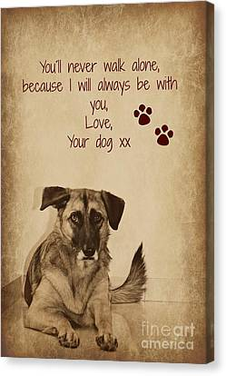 Message From Your Dog Canvas Print by Clare Bevan