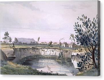 Messrs Arthurs Sheep Station, With One Canvas Print by George French Angas