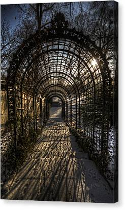 Metal Garden Canvas Print