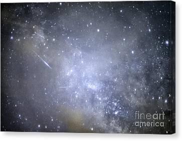 Meteor Lyrid Meteor Shower Canvas Print by Thomas R Fletcher