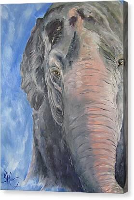 The Elder, Methai An Elephant Canvas Print
