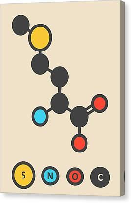 Methionine Amino Acid Molecule Canvas Print by Molekuul