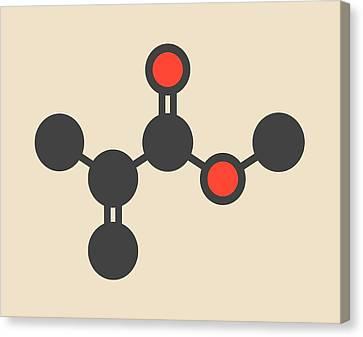 Methyl Methacrylate Molecule Canvas Print by Molekuul