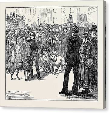 Metropolitan Boroughs Election Whig And Tory London 1874 Canvas Print