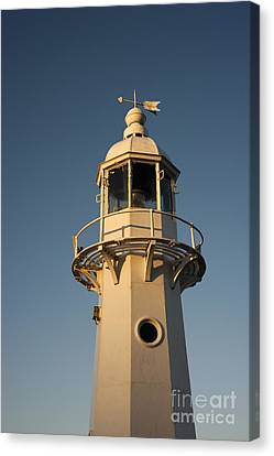 Mevagissey Lighthouse In The Evening Canvas Print by Anne Gilbert