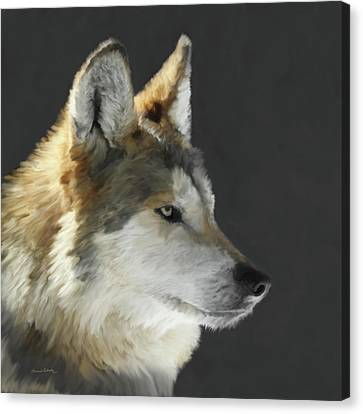 Mexican Grey Wolf Portrait Freehand Canvas Print by Ernie Echols