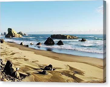 Meyers Creek Beach Oregon Canvas Print by Rafael Escalios