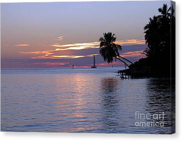 Canvas Print featuring the photograph Miami Sunset by Shelia Kempf