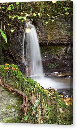 Micro Waterfall Canvas Print